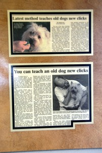 Gus and Don recognized in the Bangor Daily News for bring clicker training to Green Acres