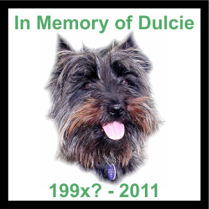 In memory of Dulcie