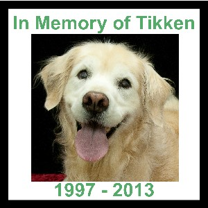 In Memory of Tikken 300x300
