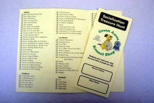 Green Acres Puppy Treasure Hunt List