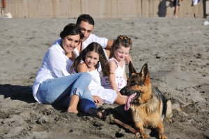 Family and Dog at Beachcanstockphoto5015887