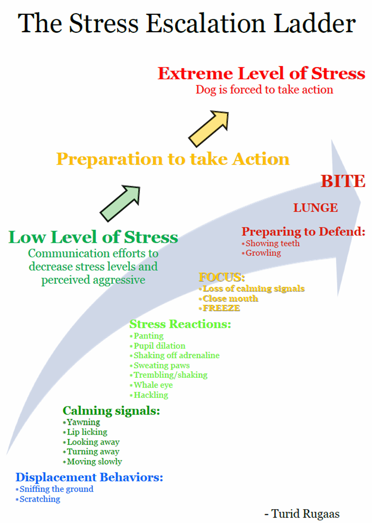 Stress Escalation Ladder-Rugaas
