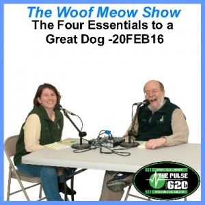 20FEB16-The Four Essentials to A Great Dog 400x400