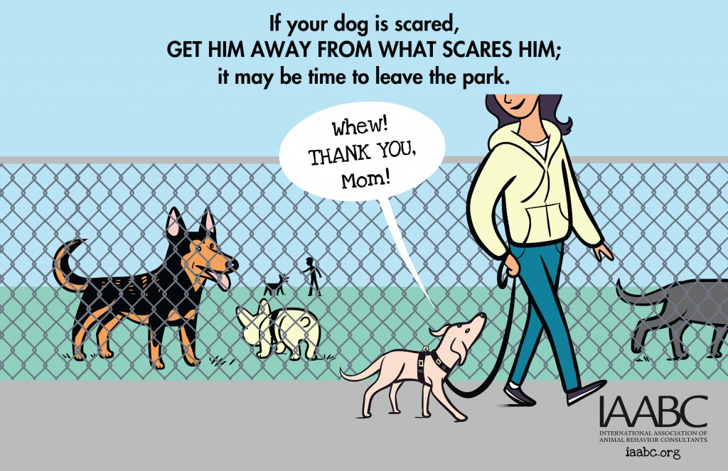 iaabc-dogpark-Is Your Dog Scared-2