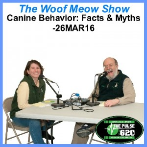 26MAR16-Canine Behavior-Myths and Facts 400x400