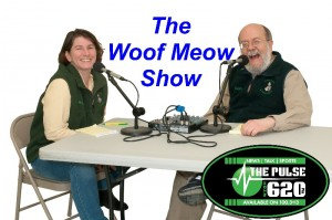 GAKS Woof Meow show with AM620-2016- 800x531