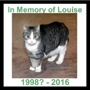 In Memory of Louise 400x400