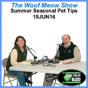 18JUN16-Summer Seasonal Pet Tips 400x400