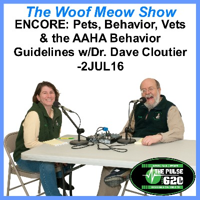 2JUL16 ENCORE AAHA Bhx Guidelines W Dave Cloutier 400x400