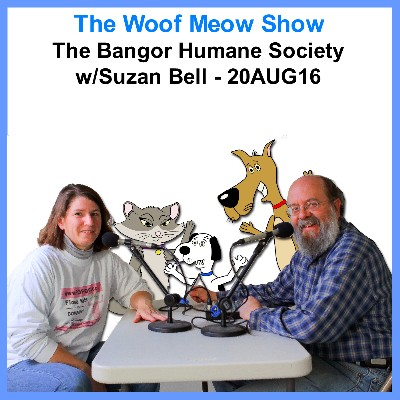 podcast the bangor humane society and the 23rd annual paws on