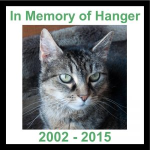 In Memory of Hanger 800x800