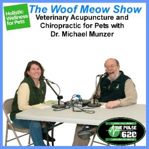 08oct16-holistic-and-complementary-wellness-for-pets-veterinary-acupuncture-and-chiropractic-michael-munzer-400x400