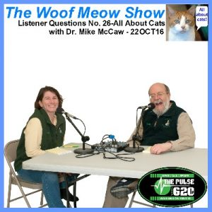 22oct16-listener-questions-no26-all-about-cats-mike-mccaw-400x400