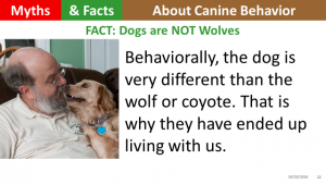 dogs-are-not-wolves