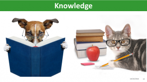 knowledge-1