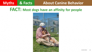 dogs-have-an-affinity-for-people