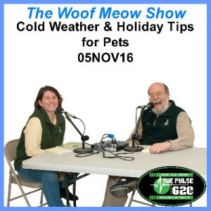 05nov16-cold_weather_and_holiday_tips_for_petr_pets-400x400