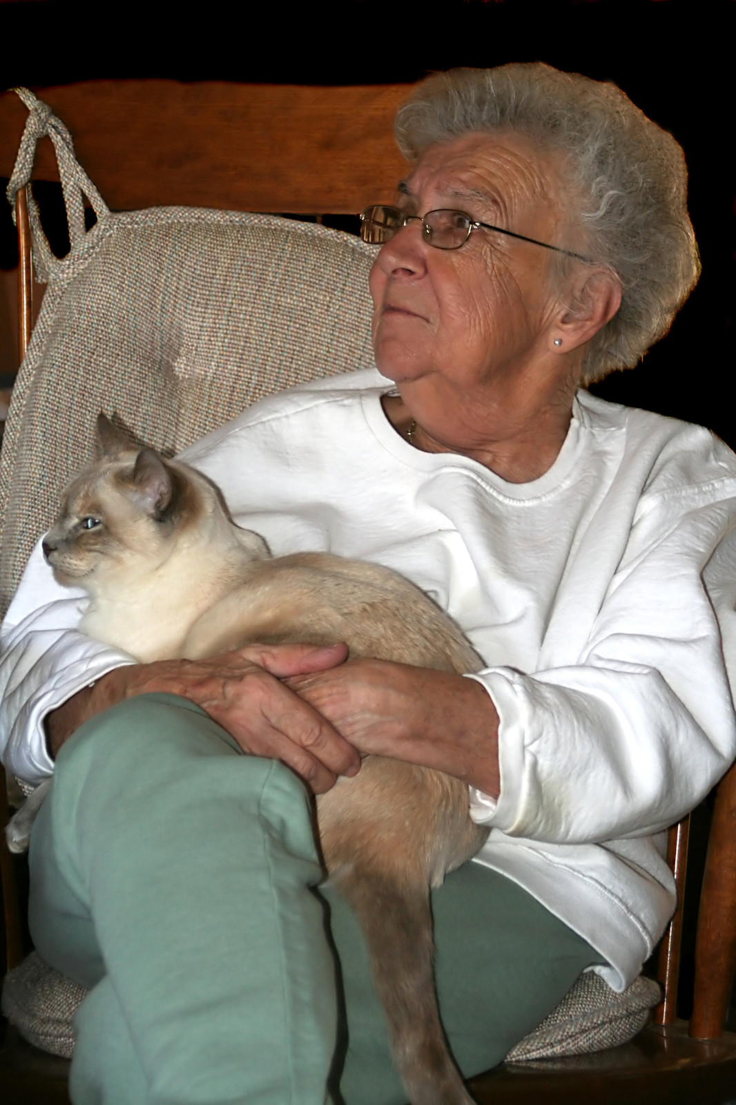 senior woman holding cat-canstockphoto10265807