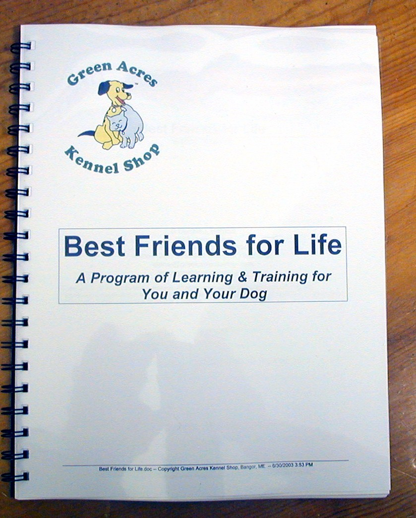 Best Friends for Life book-1