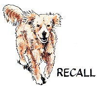 Recall color_copy_200x181