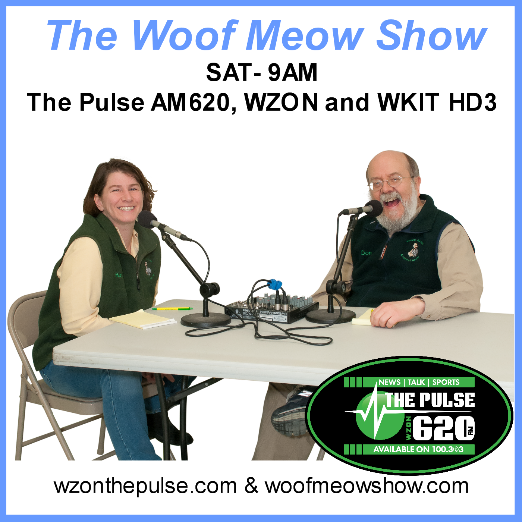Words, Woofs & Meows Show